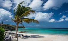 beach-curacao-loungers-878
