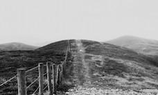 black-and-white-border-fence-1151