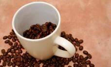 coffee-062814162F663FA3