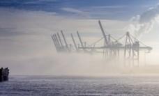 Supply Chain Disruption