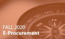 Spring 2020 E-Procuremen SolutionMap Provider Scoring Summary
