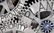 Procurement services vendors